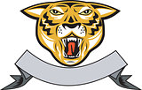 Tiger Head Growl Head Isolated