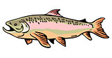 Trout Fish Retro