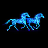 Blue fire horses.