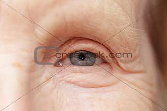 old woman gray eye
