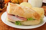 Hogie sandwich