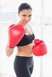 Playful dark haired model in sportswear wearing red boxing gloves