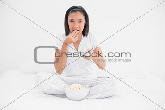 Focused young dark haired model watching tv and eating popcorn