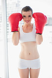Dynamic fit brown haired model in sportswear wearing red boxing gloves