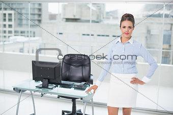 Attractive brunette businesswoman standing hand on hips