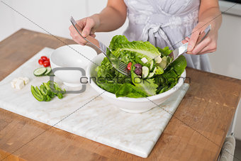 Close up on woman mixing healthy salad