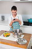 Smiling pretty woman wearing apron texting