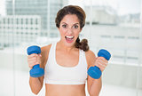 Sporty brunette lifting dumbbells looking at camera