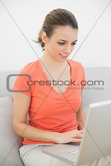 Content smiling woman working with her notebook sitting on couch