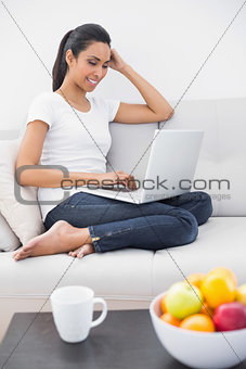 Casual happy woman using her notebook sitting on couch
