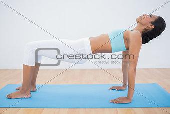 Slim dark haired woman doing yoga pose