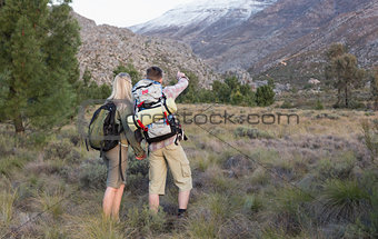 Couple with backpacks walking on forest landscape