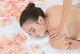 Woman enjoying back massage at beauty spa