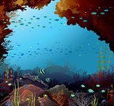 Coral reef and underwater creatures.