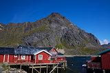 Red rorbu fishing huts