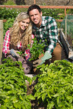 Young couple crouhing in their garden holding a plant
