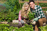 Smiling young couple crouchng in their garden holding a plant