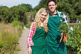 Cute couple posing in their garden holding carrots