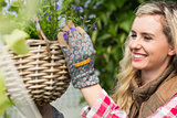 Smiling woman fixing a hanging flower basket