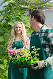 Man holding carton of small plants and turning to his smiling girlfriend