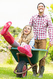 Smiling man pushing his laughing girlfriend in a wheelbarrow