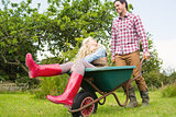 Cheerful man pushing his laughing girlfriend in a wheelbarrow