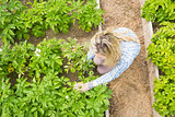 Overhead of blonde woman working in her garden