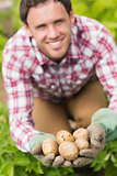 Young man showing some potatoes