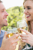 Young couple toasting with white wine