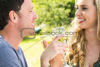 Young couple toasting and linking arms