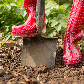 Woman wearing red rubber boots using shovel