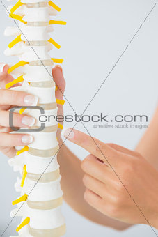 Close up of female hand pointing at skeleton model