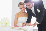 Handsome bridegroom signing wedding contract