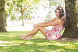 Stylish pretty brunette sitting under a tree