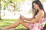 Stylish cute brunette sitting under a tree using tablet