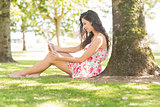 Stylish attractive brunette sitting under a tree using tablet