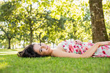 Stylish beautiful brunette lying on a lawn