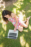 Stylish attractive brunette sitting on the grass using laptop