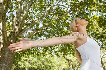 Content young woman doing yoga in a park