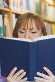 Mature woman reading concentrated a book