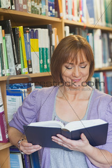 Peaceful content woman reading a book