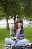 Focused brunette student using tablet sitting on bench