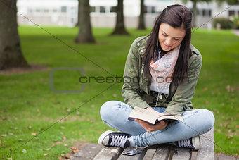 Happy brunette student sitting on bench reading