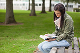 Focused brunette student sitting on bench reading