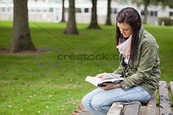 Focused brunette student sitting on bench reading
