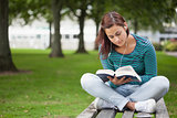 Content casual student sitting on bench reading