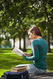 Calm casual student sitting on bench reading