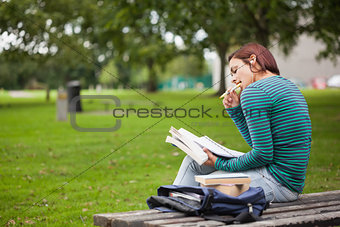 Thoughtful casual student sitting on bench reading