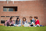 Five casual students sitting on the grass using laptop