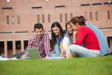 Five casual students sitting on the grass looking at laptop